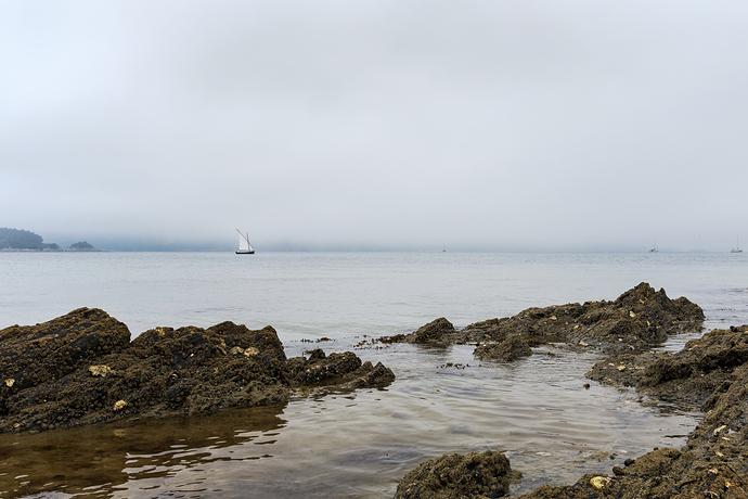 Barco-con-niebla.web1jpg