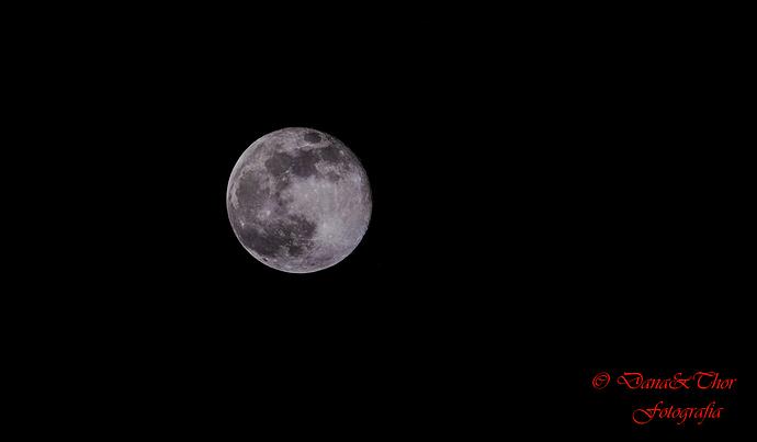 Luna 04-2020