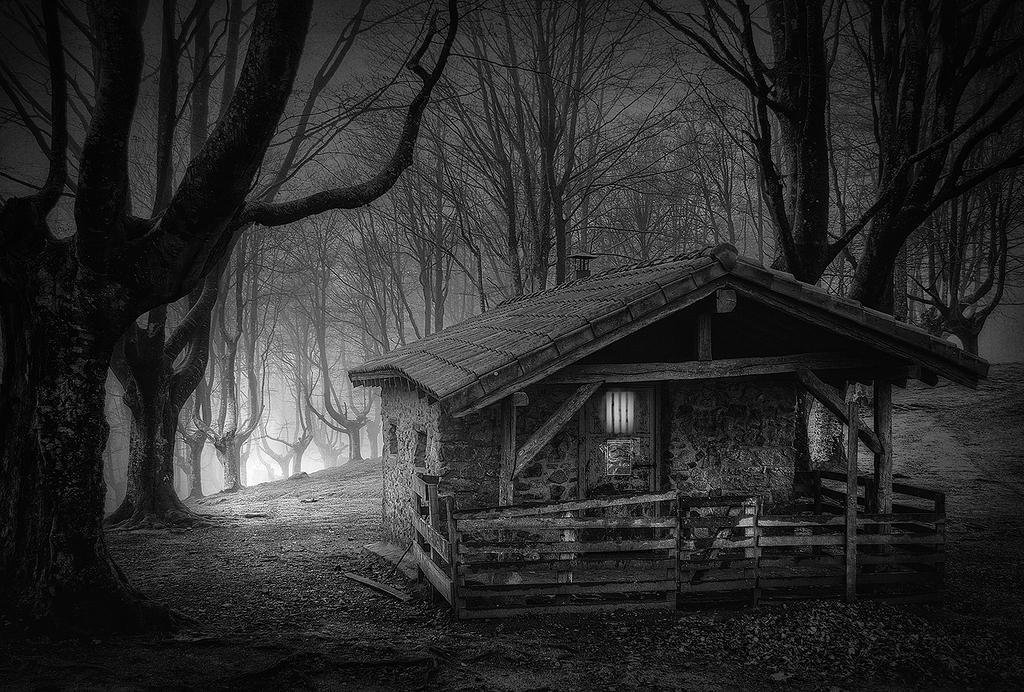 Una casita en el bosque