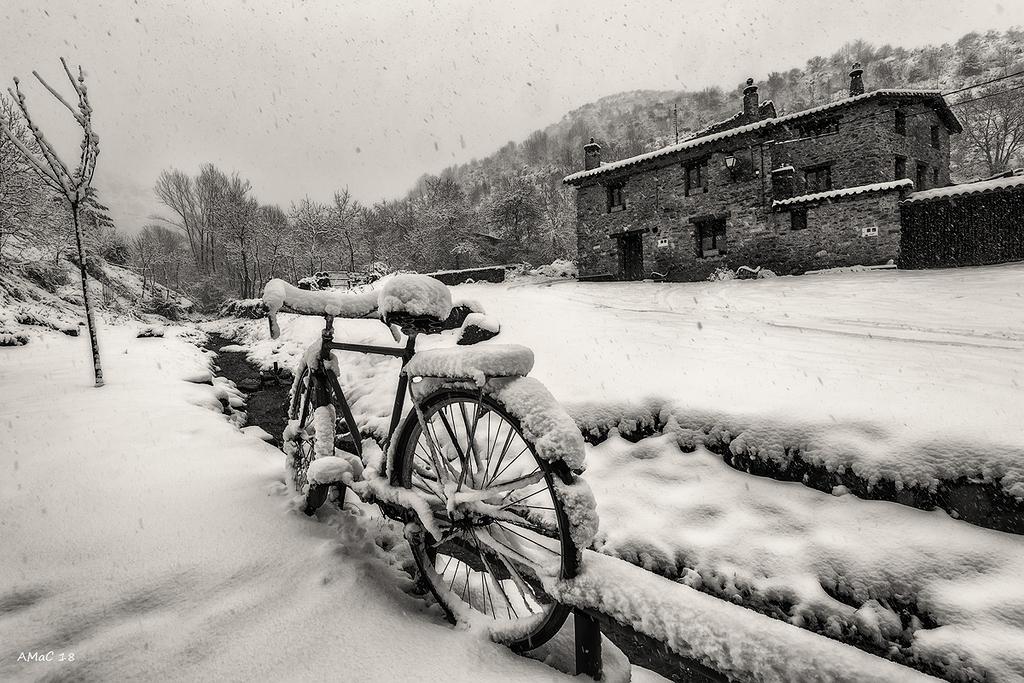 Un día de nieve