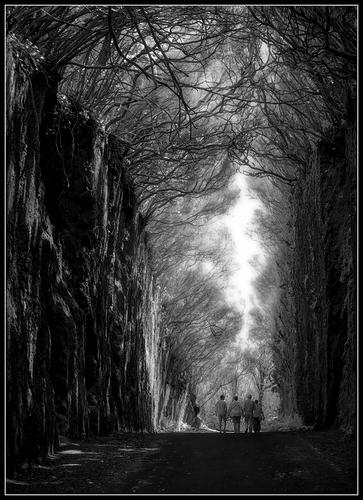 Caminando hacia la luz  # DSCF2659-61