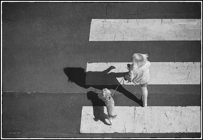 CA-De-paseo-#DSC_0272-contraste