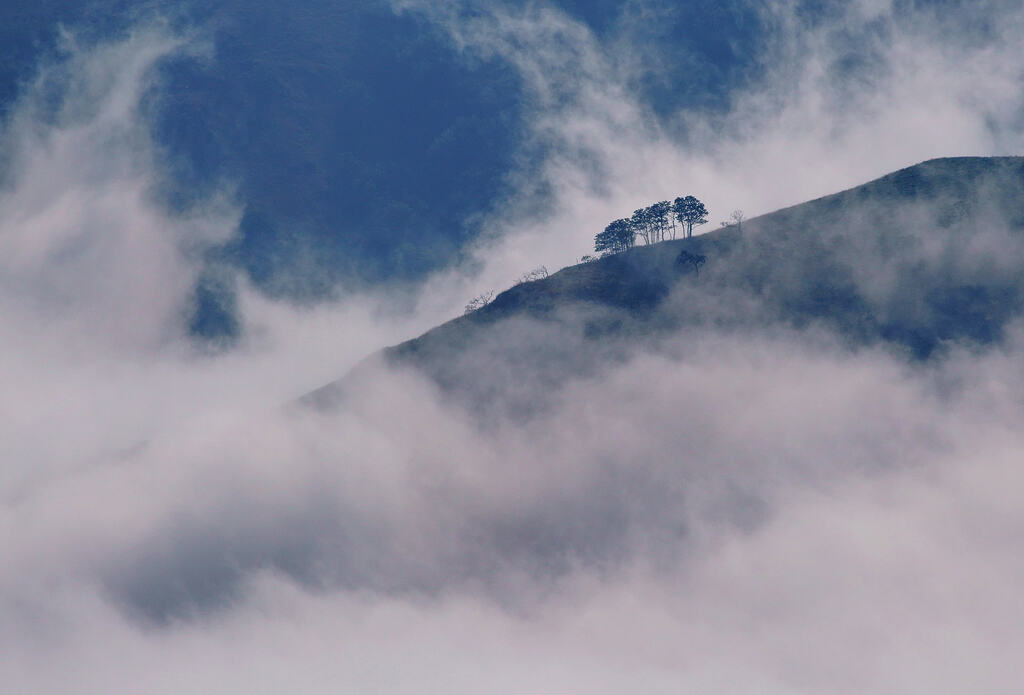 Nieblas en el Organbide Lepoa (Serie completa)
