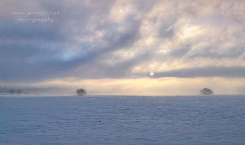 mañanas de nieve y niebla
