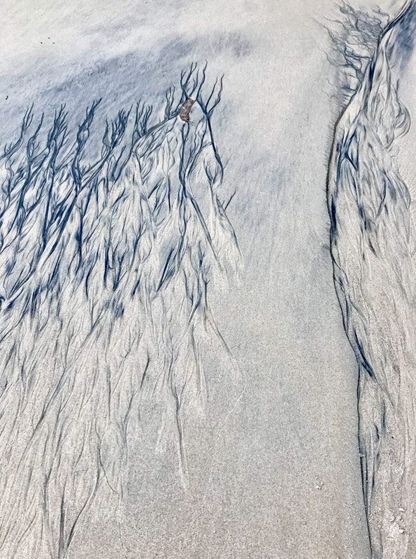 Las alas rotas del ángel por el artista mar atlántico
